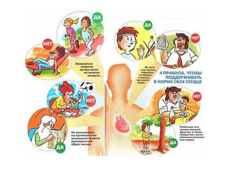 Высокий пульс при нормальном давлении что делать и какие таблетки принимать, причины, как снизить и