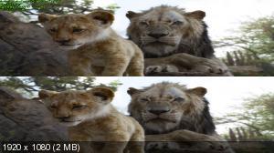 Король Лев 3D / The Lion King 3D  (by Ash61) Вертикальная анаморфная стереопара