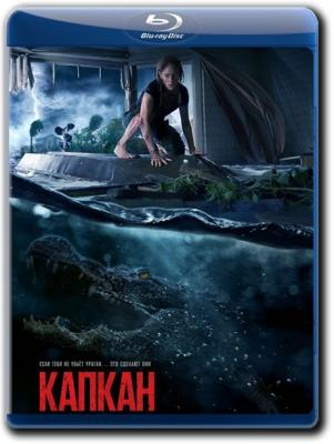Капкан / Crawl (2019) Blu-Ray 1080p | Лицензия