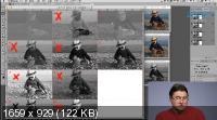 Adobe Photoshop: трихроматические каналы изображения (2019) HDRip
