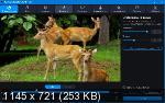 Movavi Video Converter 20.0.1 PremiumPortable by conservator