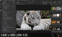 Capture One 20 Pro 13.0.0.155