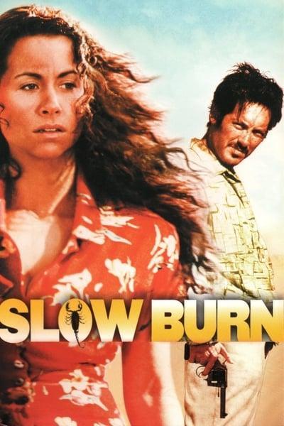 Slow Burn 2000 1080p WEBRip x264-RARBG