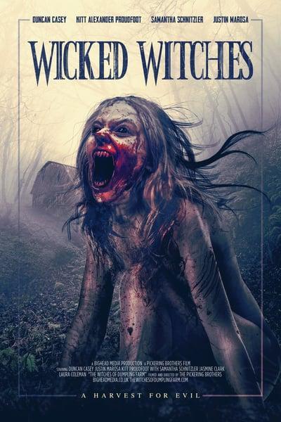 The Witches of Dumpling Farm 2018 720p AMZN WEBRip DDP2 0 x264-iKA