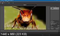 Helicon Focus Pro 7.6.1