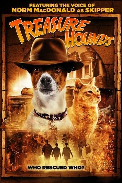 Treasure Hounds 2017 1080p WEBRip x264-RARBG