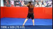 Курс самостоятельной тренировки ударной техники (2019)