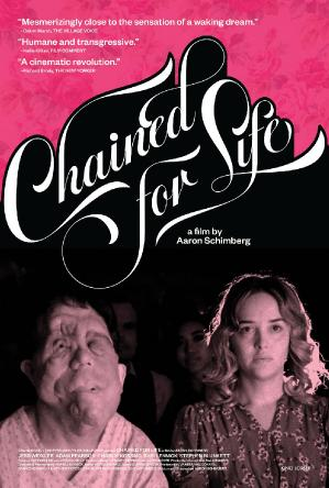 Chained for Life 2018 WEBRip XviD MP3-XVID