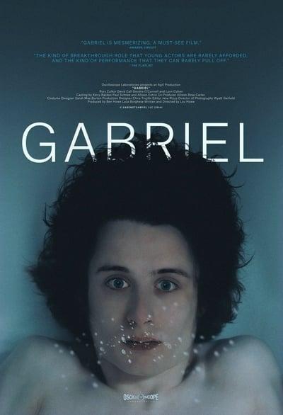 Gabriel 2014 WEBRip x264-ION10