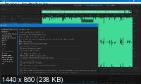 Adobe Audition 2020 13.0.1.35 Portable by punsh