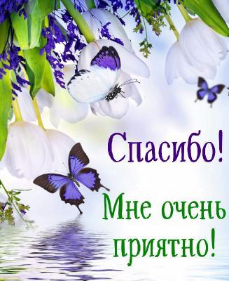 Поздравляем с Днем Рождения Ольгу (strazik) _b3c222bebec9308931a4a16f255fd2c1