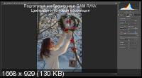 Обработка зимних фото. Художественные эффекты (2018) HDRip