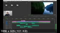 Adobe Premiere Pro. Продвинутый уровень. Гибридный курс (2019) HDRip