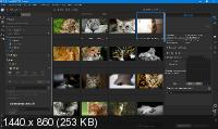 ON1 Photo RAW 2020 14.0.1.8289 Portable by punsh