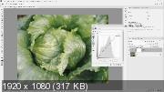 Основы цветокоррекции в Adobe Photoshop (2019) Мастер-класс