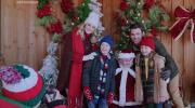 Рождество с корги / A Very Corgi Christmas (2019) WEB-DLRip