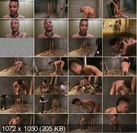 Thetrainingofo/Kink - Nikki Darling, Owen Gray, James Mogul - Owen Gray and Nikki Darling (HD/720p/833 MB)