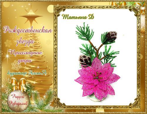 Галерея  выпускников  Рождественская звезда _21bd3b881a67c504948d49f2a7ca7730