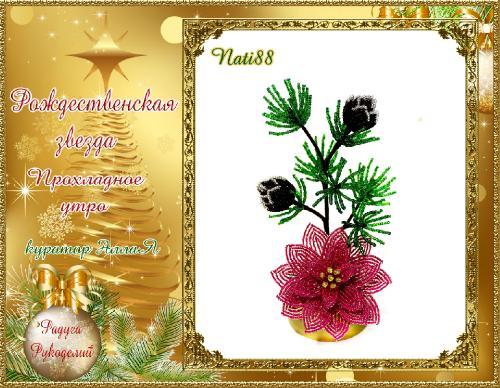 Галерея  выпускников  Рождественская звезда _06383a0b4bd26414873f7e3844853d3c