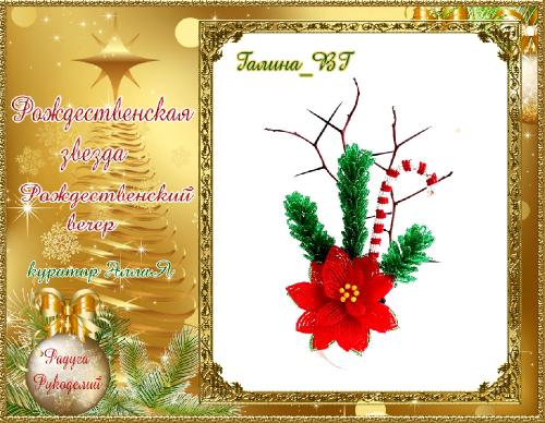 Галерея  выпускников  Рождественская звезда _c7fe04d070b418ccd4c0ad2e3d72485e