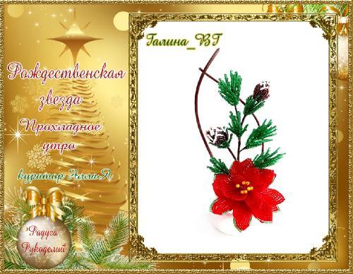Галерея  выпускников  Рождественская звезда _cead04ce6e800e3491ce0eecbaee2587