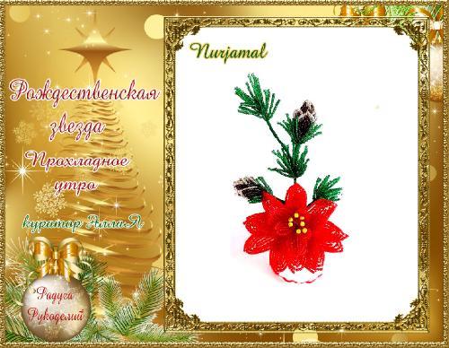Галерея  выпускников  Рождественская звезда _c7ff1e86066d071e0e8b2763096b12d5
