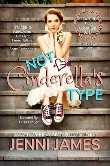 Not Cinderellas Type 2018 WEBRip XviD MP3-XVID