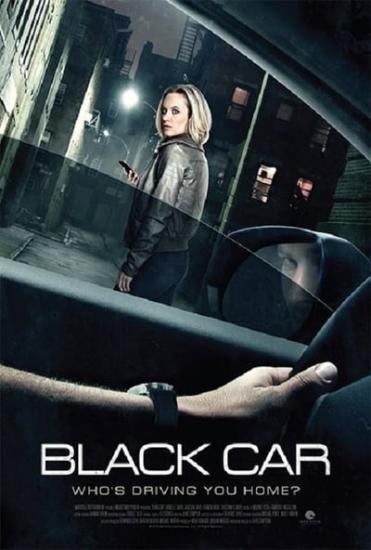 The Wrong Car 2016 1080p WEBRip x264-RARBG