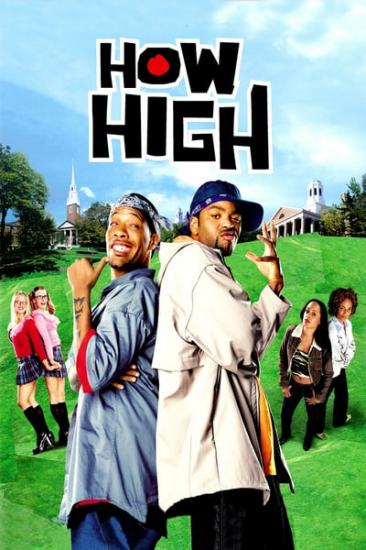 How High 2001 WEBRip XviD MP3-XVID