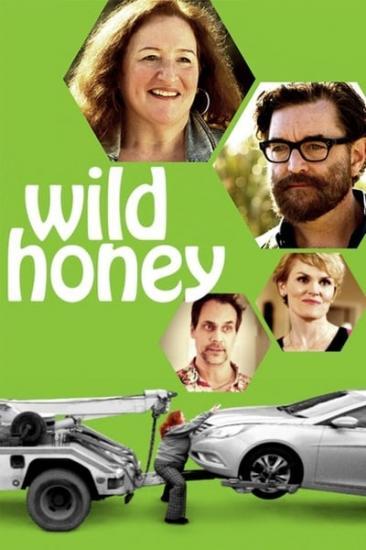 Wild Honey 2017 WEBRip x264-ION10