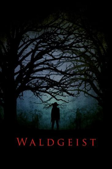 Waldgeist 2017 WEBRip XviD MP3-XVID