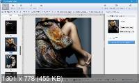 FlipBuilder Flip PDF Professional 2.4.9.39