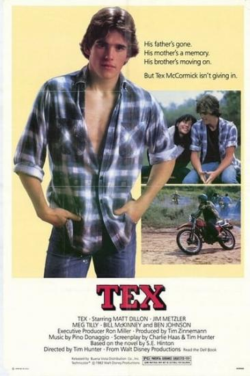Tex 1982 WEBRip x264-ION10