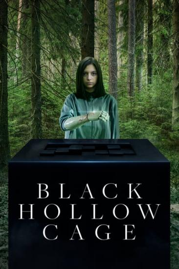 Black Hollow Cage 2017 WEBRip x264-ION10