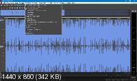 MAGIX Sound Forge Pro Suite 13.0 Build 131 + Rus