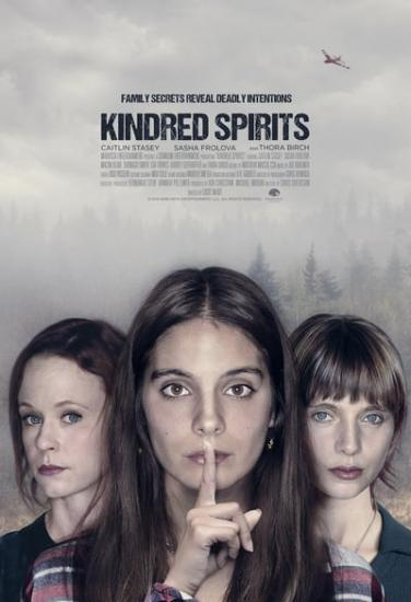 Kindred Spirits 2019 720p WEB-DL XviD AC3-FGT