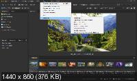 Adobe Bridge 2020 10.0.3.138