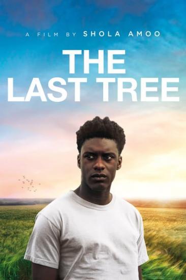 The Last Tree 2019 WEB-DL x264-FGT