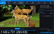 Movavi Video Converter 20.1.0 Premium