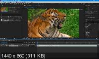Adobe After Effects 2020 17.0.3.58 by m0nkrus