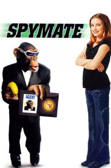 Spymate 2003 WEBRip x264-ION10