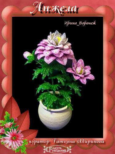 Галерея выпускников Анжела _26ea550f71cea7b7df81e6e437717e71