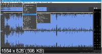 MAGIX SOUND FORGE Pro 14.0.0.30 RePack by PooShock