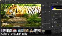 SILKYPIX Developer Studio Pro 10.0.2.0 + Rus