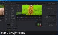Blackmagic Design Fusion Studio 16.2 Build 22