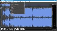 MAGIX Sound Forge Pro Suite 14.0.0.45 RePack by PooShock