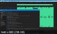 Adobe Audition 2020 13.0.4.39 RePack by PooShock