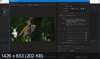 Adobe Media Encoder 2020 14.0.4.16