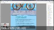 Adobe Illustrator. Базовый уровень. Гибридный курс (2020)