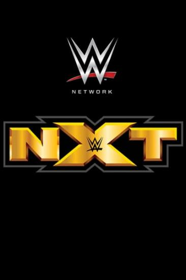 WWE NXT 2020 03 18 XviD-AFG